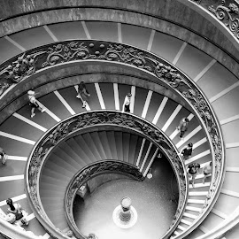 by Karel Kotrč - Buildings & Architecture Other Interior ( spiral staircase, black and white, way down, people, backstairs )