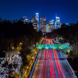 We Love LA by Alvin Simpson - City,  Street & Park  Skylines ( freeway, city, light, la, night, cityscape, skyline, highway,  )