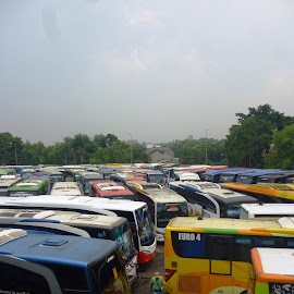 bus terminal   by Rahmat Nugroho - Transportation Automobiles ( automobiles, buses, hong, bus, metropolis, emission, greenhouse, ecosystem, congestion, jakarta, travel, transportation, asian, city, automotive, passengers, terminal, fumes, indonesia, jam, gridlock, station, gasoline, global, economy, atmosphere, nation, gas, environment, traffic, development, petroleum, valley, commuters, oil, transport, conservation, depot, asia, fuel, ecology, rush, rush hour, resource, pollution, hour, urban, effect, industrial, bottleneck, petrol, south, public )