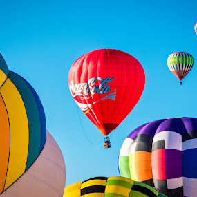 Balloon Fever by Rita Taylor - Transportation Other ( color, fiesta, balloon,  )