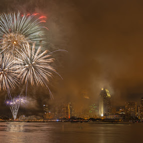 Dandelions by Wenjie Qiao - Public Holidays July 4th ( san diego, skyline, fireworks, july 4th )