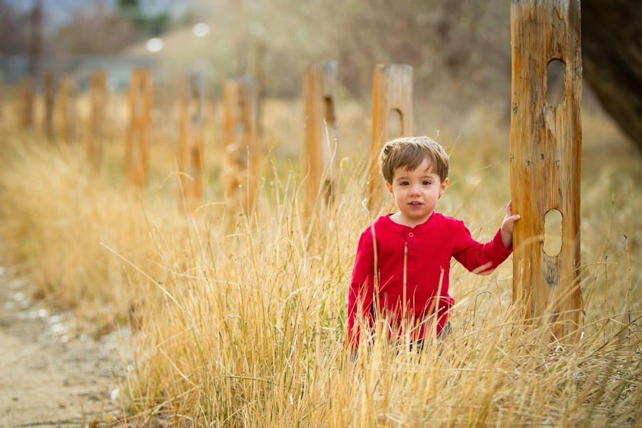 Fenced In? by Billy Brooks - Babies & Children Children Candids ( fence, outdoors, boy )