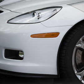 Vroom by Melissa Culp - Transportation Automobiles ( stock, engine, cars, frontend, whitecar )