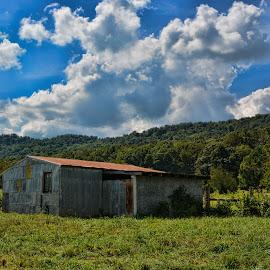 Metal Barn by Deborah Russenberger - Buildings & Architecture Other Exteriors ( barn, arkansas )