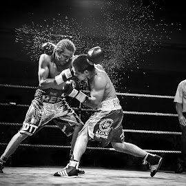 Final round  by Devid Camerlynck - Sports & Fitness Boxing
