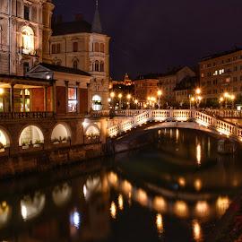Ljubljana at night by Orit Shlomov - Buildings & Architecture Architectural Detail
