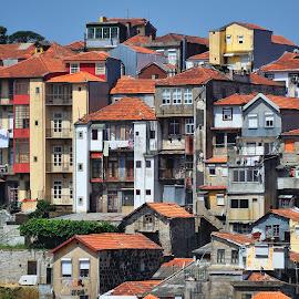 Porto by Tomasz Budziak - Buildings & Architecture Public & Historical ( buildings, architecture, portugal, porto )