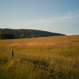 City isolation by Olivério Pires - Landscapes Prairies, Meadows & Fields ( hill, @photopires, smartphone, field, dirt, tree, fence )