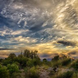 Tucsan Sunset by Charlie Alolkoy - Landscapes Sunsets & Sunrises ( clouds, sky, sunset, arizona, tucson, sunrise )