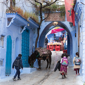 Off To School by VAM Photography - People Street & Candids ( children, culture, donkey, animal, morocco, travel, chefchaouen )