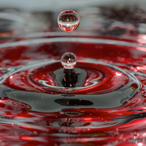 Coke Drops by Colin Dixon - Abstract Water Drops & Splashes ( water, red, coke, drink, drops, oil )