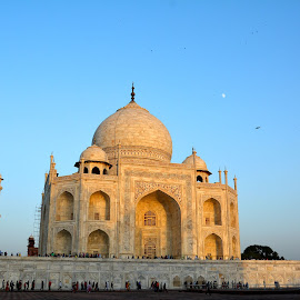 The Taj  by Asif Bora - Buildings & Architecture Public & Historical (  )