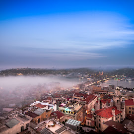 Fog And Color by Hatef Nobari - City,  Street & Park  Skylines ( foggy, fog, cityscape )