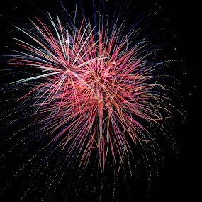 by Liz Huddleston - Abstract Fire & Fireworks ( fourth of july, colorful, cellebration, montana, colors, summer, independence, fireworks, night, july, bang,  )