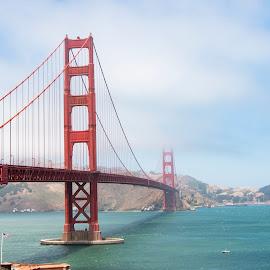 by David Ferris - Buildings & Architecture Bridges & Suspended Structures