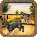 Dog Chase Rabbit Hunt Endless icon