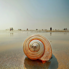 by Oms Datum Photography - Landscapes Beaches