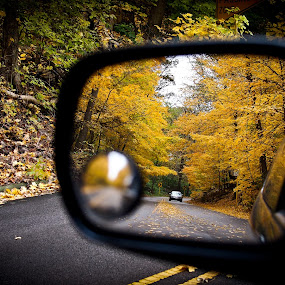yellow rearview by Felbert Edrada - Landscapes Travel ( pwcautumn )