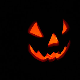 Grinning in the Darkness by Liz Pascal - Public Holidays Halloween