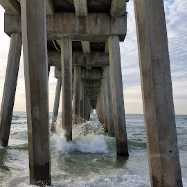 Under the Boardwalk by Kathy Psencik - Novices Only Wildlife ( under the boardwalk, waves, surf and sand, surf and piers, surf )