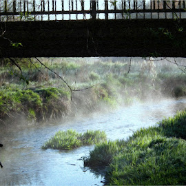 The Mist by Roger Booton - Digital Art Places ( rising, nature, bank, morning, early, river, mist )