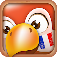 Learn French Phrases   French Translator