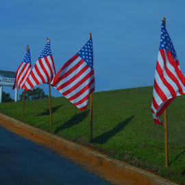 Hill of Honor by David Jarrard - Public Holidays July 4th ( flags, honor, patriotic, georgia, holidays, glory american flag conyers )