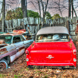 Parked for Good by Chris Cavallo - Transportation Automobiles ( fence, red, maine, truck, rusty, rust, abandoned, decay )