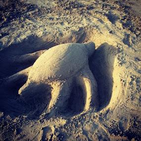Save the Turtles... by Awan Triyoga - Instagram & Mobile Instagram