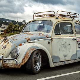 VW by Barry  Stead - Transportation Automobiles ( vw, classic car, beetle, volkswagen )