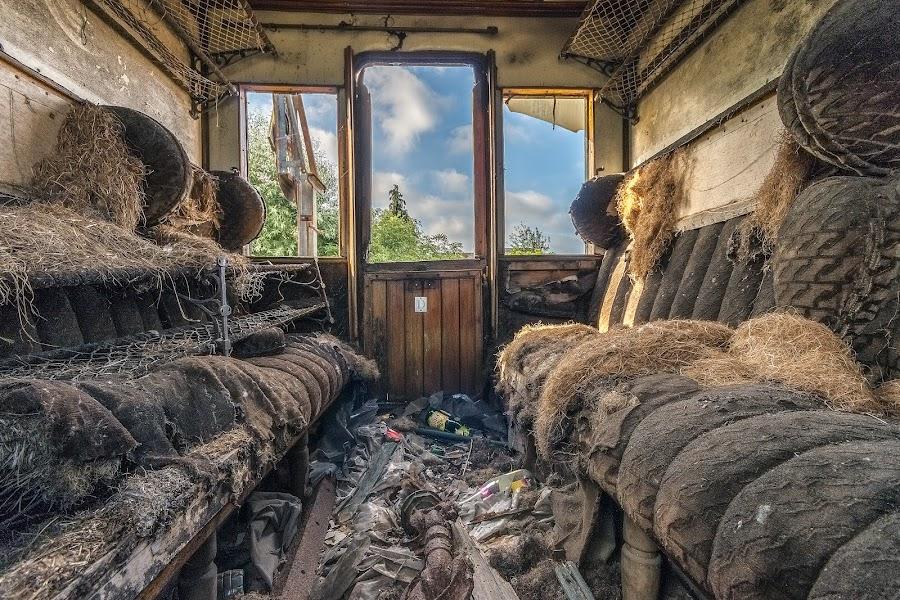 Train graveyard by Henk Smit - Transportation Trains