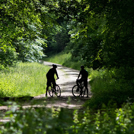 The Right Path by Stuart Byles - Transportation Bicycles ( cycle, cycling, forest, cycle path, mountain road, two, well trodden path, duo, nature, bikes, trail, path, mountain bikes )