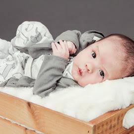 Sweet Eyes by Jenny Hammer - Babies & Children Babies ( baby, sweet, cute, boy, eyes )