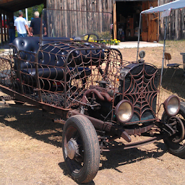 Spiderweb Doodlebug by Tina Tippett - Transportation Automobiles ( automobiles, other, transportation, tractor,  )