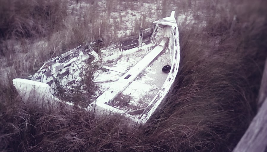 by Christopher Harris - Novices Only Objects & Still Life ( history, old, boat, antique, historic )