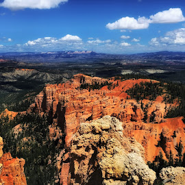 Rainbow View Bryce Canyon by Laura Horne - Landscapes Travel ( canyon hoodoos sandstone natural canon )