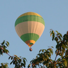 Hot air balloon by John Powell - Sports & Fitness Other Sports ( balloon . hot air )