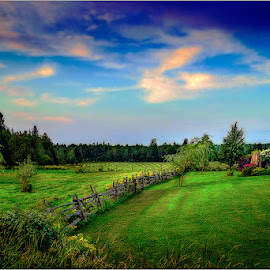 untitled by Dragan Milovanovic - Landscapes Prairies, Meadows & Fields