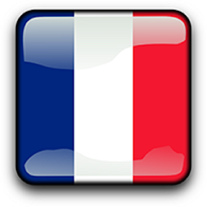 Download French Grammar Pro For PC Windows and Mac