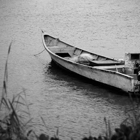Alone by Cristopher Selga - Transportation Boats ( water, grass, speed, white, boat, black )