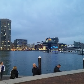 Baltimore Inner Harbor by Maricor Bayotas-Brizzi - City,  Street & Park  Skylines