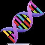 Genetic Helper Icon