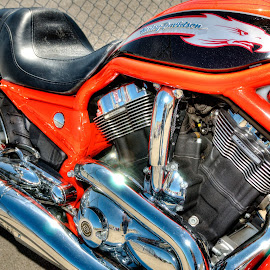 Not Your Dad's H D by Dennis McClintock - Transportation Motorcycles ( motorbike, transport contest, motorcycle, transportation,  )