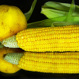 In the beauty  o f corn and cucumber fruit by Arvind Akki - Food & Drink Fruits & Vegetables ( fruits, composition, corn, cucumber )