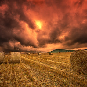 Foreboding sky by Mark Leader - Landscapes Prairies, Meadows & Fields ( clouds, south downs, stormy sky, hay bales, bales, east sussex, field, england, sky, sussex, sussex downs, hay, dark, dark sky, harvest, threatening sky )