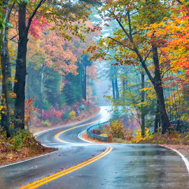 Curvy Fall Road by Sue Matsunaga - Transportation Roads