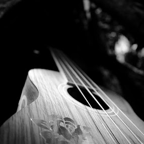 Ukulele by Lubelter Voy - Artistic Objects Other Objects ( music, tree, wood, ukulele, black and white, sound, chords, strings, instrument, object, things, hard )