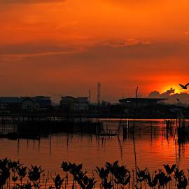 the boundaries by Azwar War - Landscapes Sunsets & Sunrises ( london, indonesia, sunset, australia, asia, pixoto, garudaindonesia, turkey, brunei, landscape, netherlands, spain, travel photography )