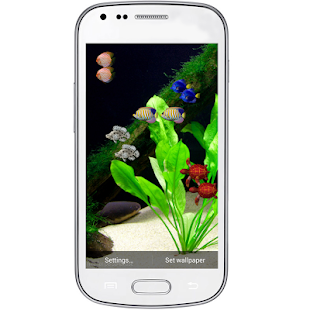 Coral Reef HD LiveWallpaper - screenshot