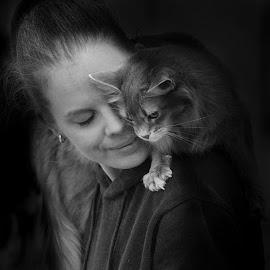 Cat & Girl by Pauli Araneva - Animals - Cats Portraits ( catshow, cat, beautiful, kissanäyttely, turku, kissa )